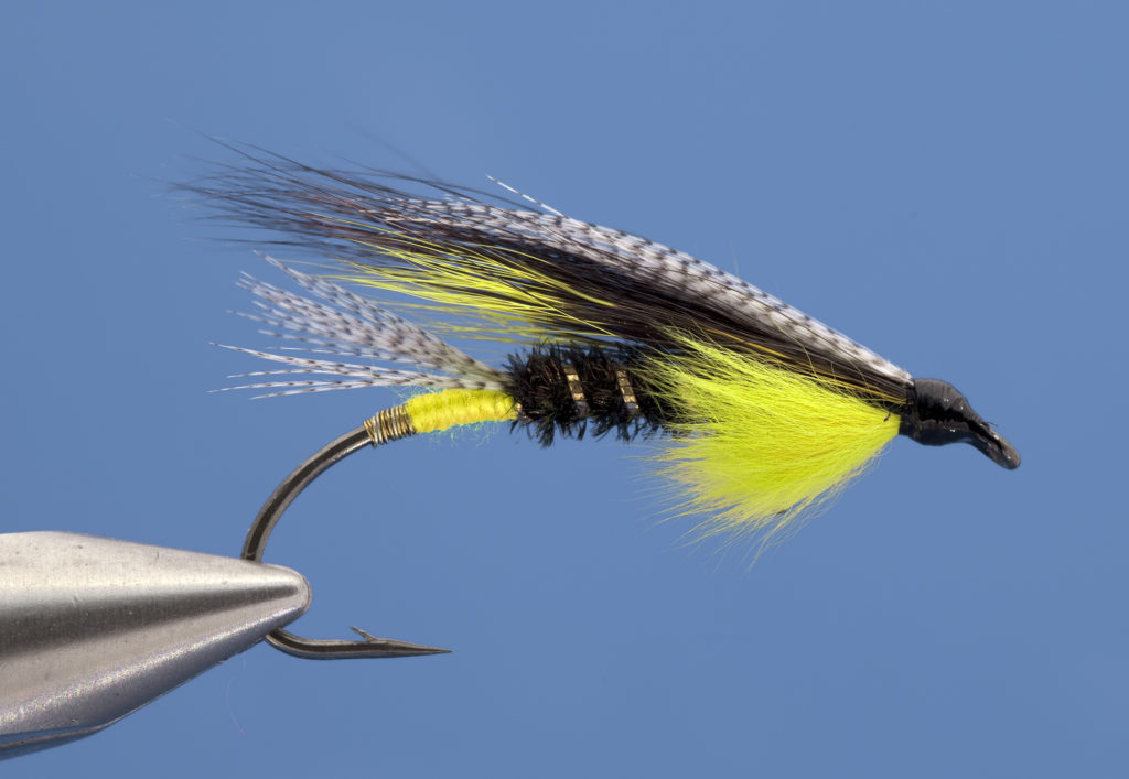 A new generation of hairwing patterns – FlyFishing Gazette
